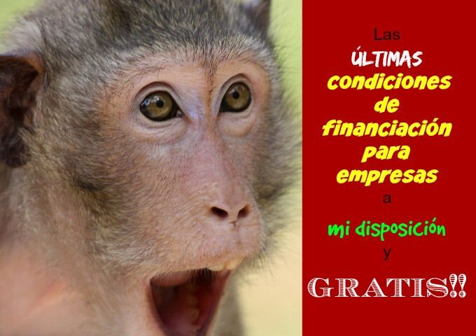 """""""Condiciones de financiación para empresas"""""""